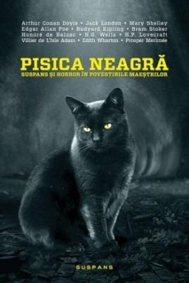 <i>Pisica neagră: Suspans și horror în povestirile maeștrilor</i> - Dana Ionescu (coord.)