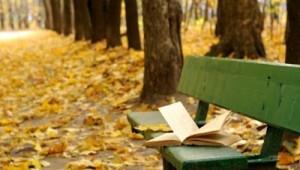 UITĂ o carte undeva