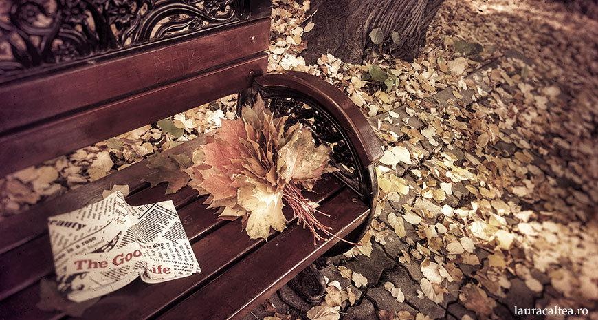 Noutăți literare 26 octombrie-8 noiembrie