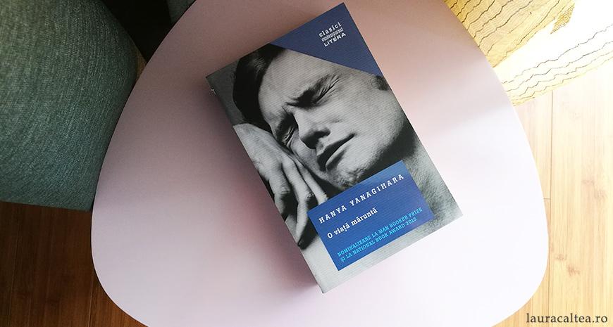 """O tristețe amestecată cu mirare și venerație, despre """"O viață măruntă"""", de Hanya Yanagihara"""